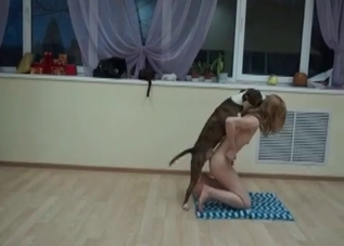 Lucky doggy is being presented with a striptease